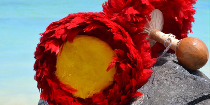 ハワイ文化の伝承サポート